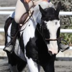 Equestrian student in San Juan Capsitrano competes in Interscholastic Equestrian League on her horse.